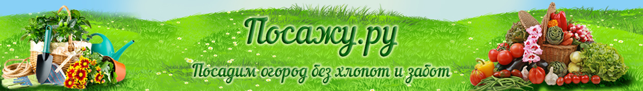 Логотип сайта Сад и огород своими руками не как у всех. Интересные идеи, огород без хлопот