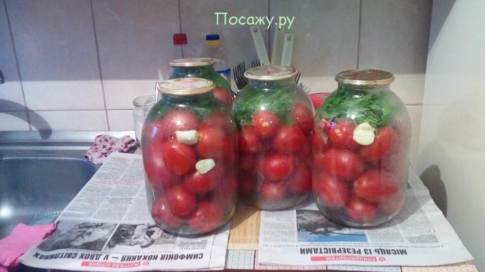 маринованные помиоры