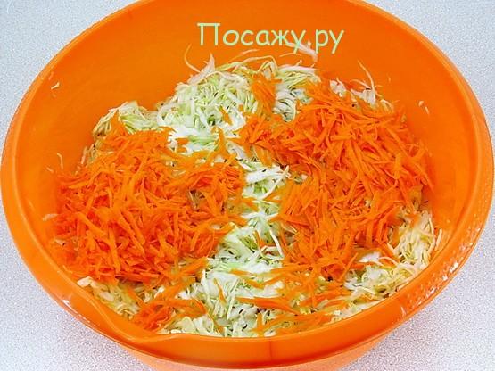 морковь и капуста