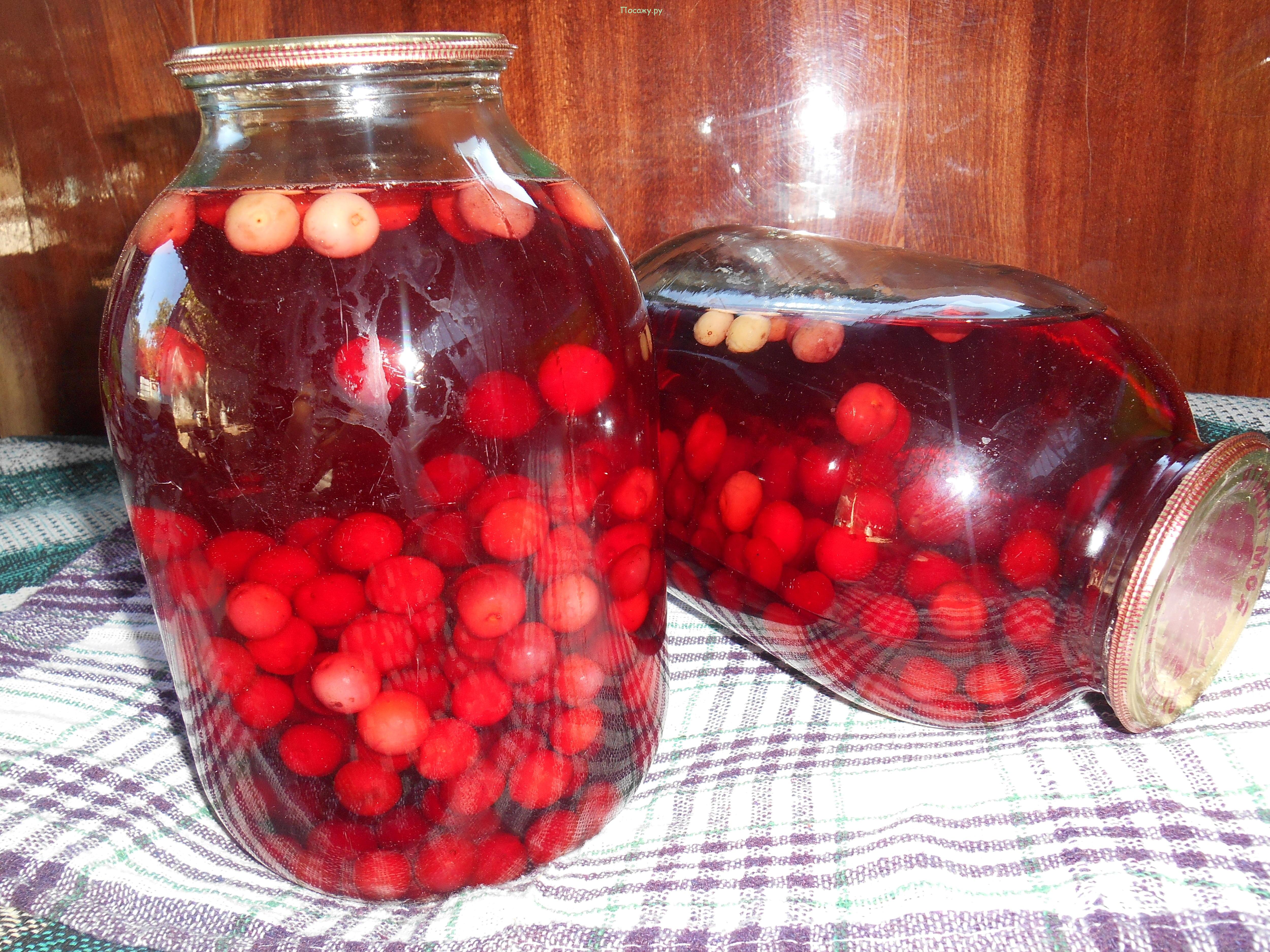 компот из вишни на зиму на 3 литровую банку пошаговый рецепт с фото