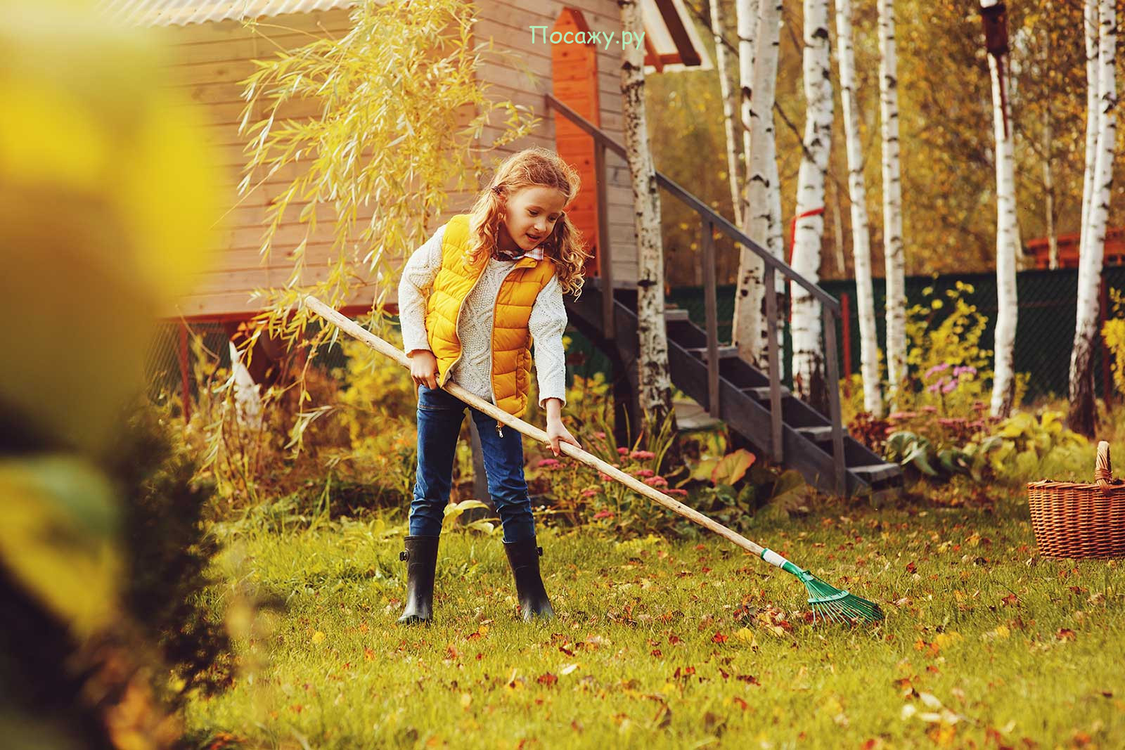 уборка в саду