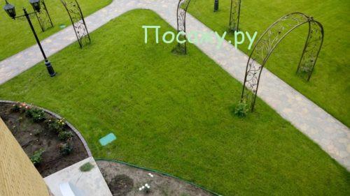 Ровный газон